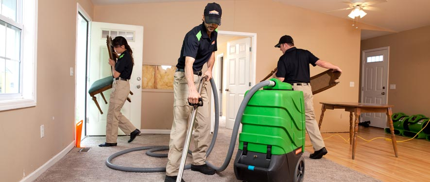 Demopolis, AL cleaning services